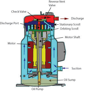 Refrigeration unit scroll compressor
