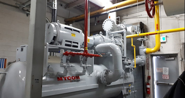 Compressor for the Global Egg food processing cooling project